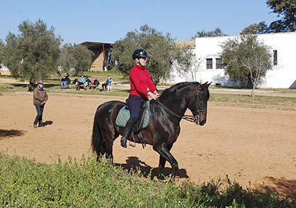 2 3ba classical riding courses bolero hacienda dos olivos