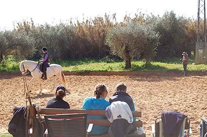 2 3bc classical riding courses santero hacienda dos olivos
