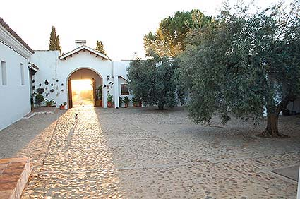 3 3ac country house court yard hacienda dos olivos